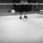 BasicStep1_Call&response_Flap&ShaffleStep&PaddleRoll